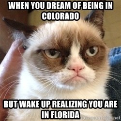 Grumpy Cat 2 - When you dream of being in Colorado but wake up realizing you are in Florida