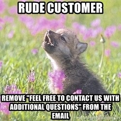 """Baby Insanity Wolf - rude customer remove """"feel free to contact us with additional questions"""" from the email"""