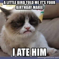 Birthday Grumpy Cat - a little bird told me it's your birthday marie i ate him