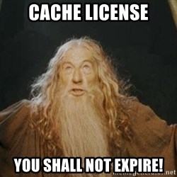 You shall not pass - cache license you shall not expire!