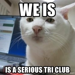 Serious Cat - We is Is a serious Tri club