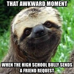 Sarcastic Sloth - That awkward moment when the high school bully sends a friend request