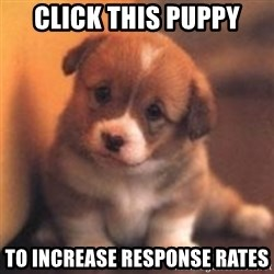 cute puppy - Click this puppy To Increase response rates