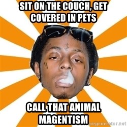 Lil Wayne Meme - sit on the couch, get covered in pets call that animal magentism
