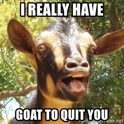 Illogical Goat - I really have goat to quit you