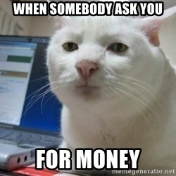Serious Cat - when somebody ask you for money
