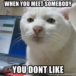 Serious Cat - when you meet somebody you dont like