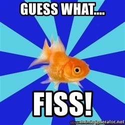 Absentminded Goldfish - GUESS WHAT.... FISS!