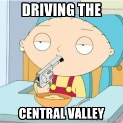 Suicide Stewie - DRIVING THE CENTRAL VALLEY