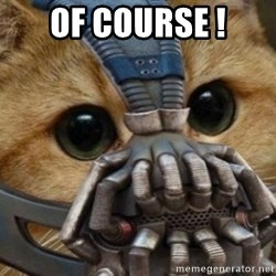 bane cat - Of course !