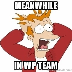Fry Panic - Meanwhile in wp team