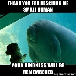 Overlord Manatee - Thank you for rescuing me small human your kindness will be remembered