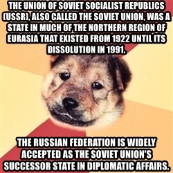 Typical Puppy - The Union of Soviet Socialist Republics (USSR), also called the Soviet Union, was a state in much of the northern region of Eurasia that existed from 1922 until its dissolution in 1991. The Russian Federation is widely accepted as the Soviet Union's successor state in diplomatic affairs.