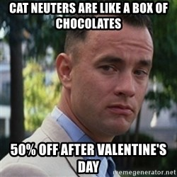 forrest gump - cat neuters are like a box of chocolates 50% off after valentine's day