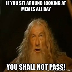 Gandalf You Shall Not Pass - If you sit around looking at memes all day You shall not pass!