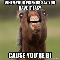 Horse - When your friends say you have it easy cause you're bi