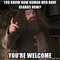 Hagrid - you know how roman men have beards now? You're WELCOME