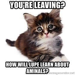 fyeahpussycats - You're leaving?  how will lupe learn about aminals?