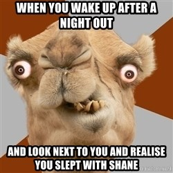 Crazy Camel lol - When you wake up after a night out And look next to you and realise you slept with Shane