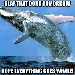 whaleeee - SLAY THAT DONG TOMORROW HOPE EVERYTHING GOES WHALE!