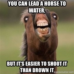 Horse - YOU CAN LEAD A HORSE TO WATER, BUT IT'S EASIER TO SHOOT IT THAN DROWN IT