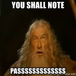 Gandalf You Shall Not Pass - You shall note passsssssssssss