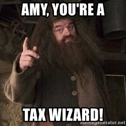 Hagrid - Amy, You're A Tax Wizard!