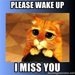 puss in boots eyes 2 - PLEASE WAKE UP I MISS YOU