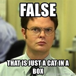 False guy - FALSE That is just a cat in a box