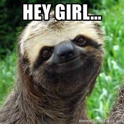 Sarcastic Sloth - Hey girl...