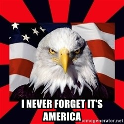 Bald Eagle -  I never forget it's America