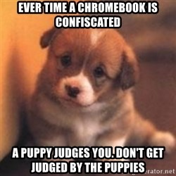 cute puppy - ever time a chromebook is confiscated a puppy judges you. don't get judged by the puppies