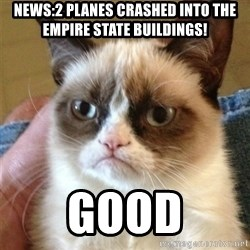 Grumpy Cat  - news:2 planes crashed into the empire state buildings! good