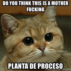 Do you think this is a motherfucking game? - Do you tHink this is a mOther fucking Planta de proceso