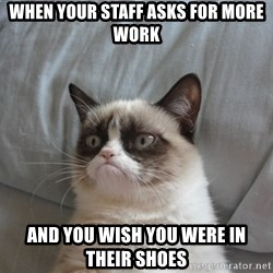 Grumpy cat 5 - when your staff asks for more work and you wish you were in their shoes