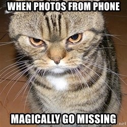 angry cat 2 - when photos from phone Magically go missing
