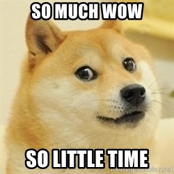 Dogee - So much wow so little time