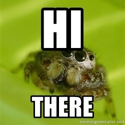 The Spider Bro - Hi  There