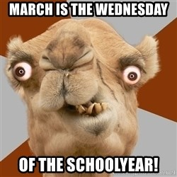 Crazy Camel lol - March is the wednesday  Of the Schoolyear!