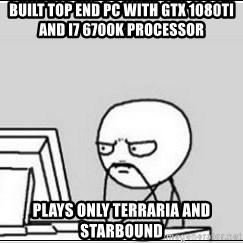 computer guy - Built Top end PC with GTX 1080ti and i7 6700k processor  Plays only terraria and starbound