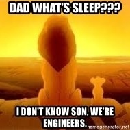 The Lion King - Dad what's sleep???  I don't know son, WE'Re engineers.