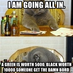 Poker Cat - I am going all In. A green is worth 5000, black worth 10000 Someone get the damn bord