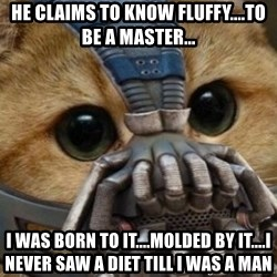 bane cat - He claims to know FLUFFY....To be a master... I was born to IT....Molded by IT....I never saw a diet till I WAS a man