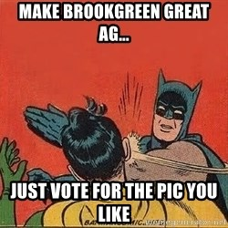 batman slap robin - Make brookgreen great ag... just vote for the pic you like