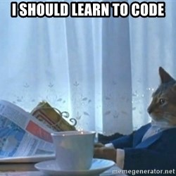 Sophisticated Cat - i should learn to code