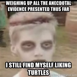 I like turtles  - weighing up all the anecdotal evidence presented thus far i still find myself liking turtles