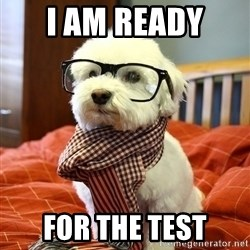 hipster dog - i am ready  for the test