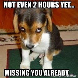 sorry dog - Not even 2 hours yet... Missing you already....