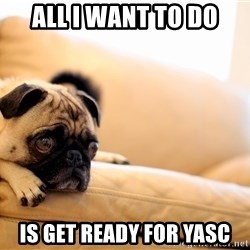 Sorrowful Pug - all i want to do is get ready for yasc