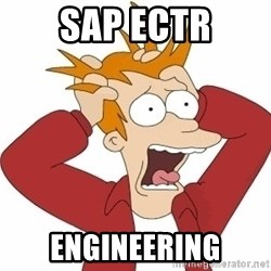 Fry Panic - SAP ECTR Engineering